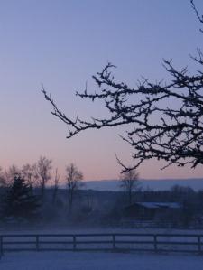 early-morning-beauty