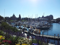 Victoria, BC Harbor, Sept 2012